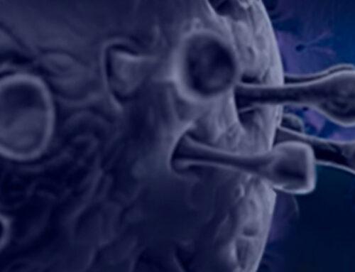 Vacuna frente a la COVID-19 de Janssen: riesgo de trombocitopenia inmune y tromboembolismo venoso